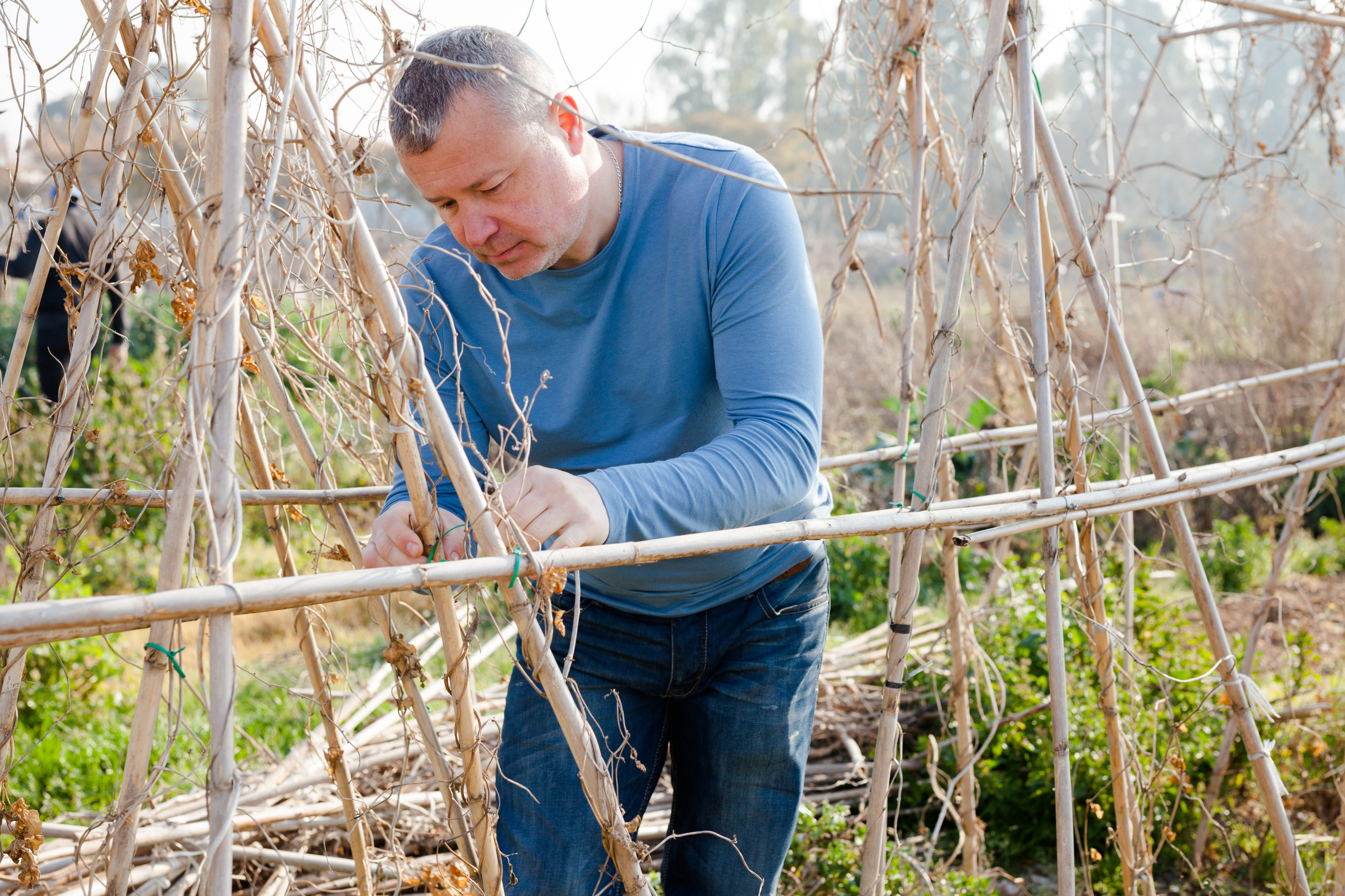 Male horticulturist working with wooden girders in  garden outdoor