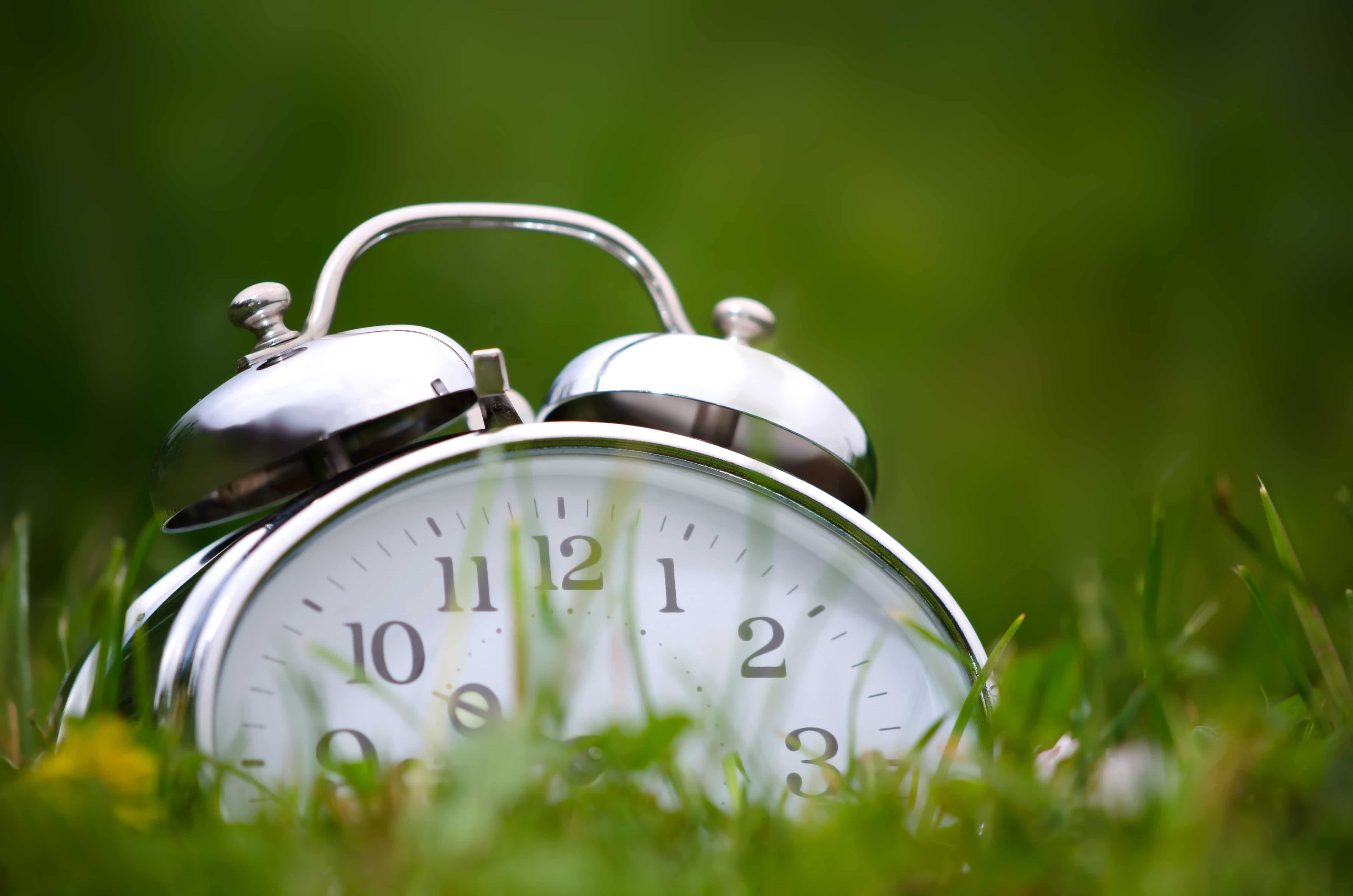 Old metal alarm clock among grass and flowers.