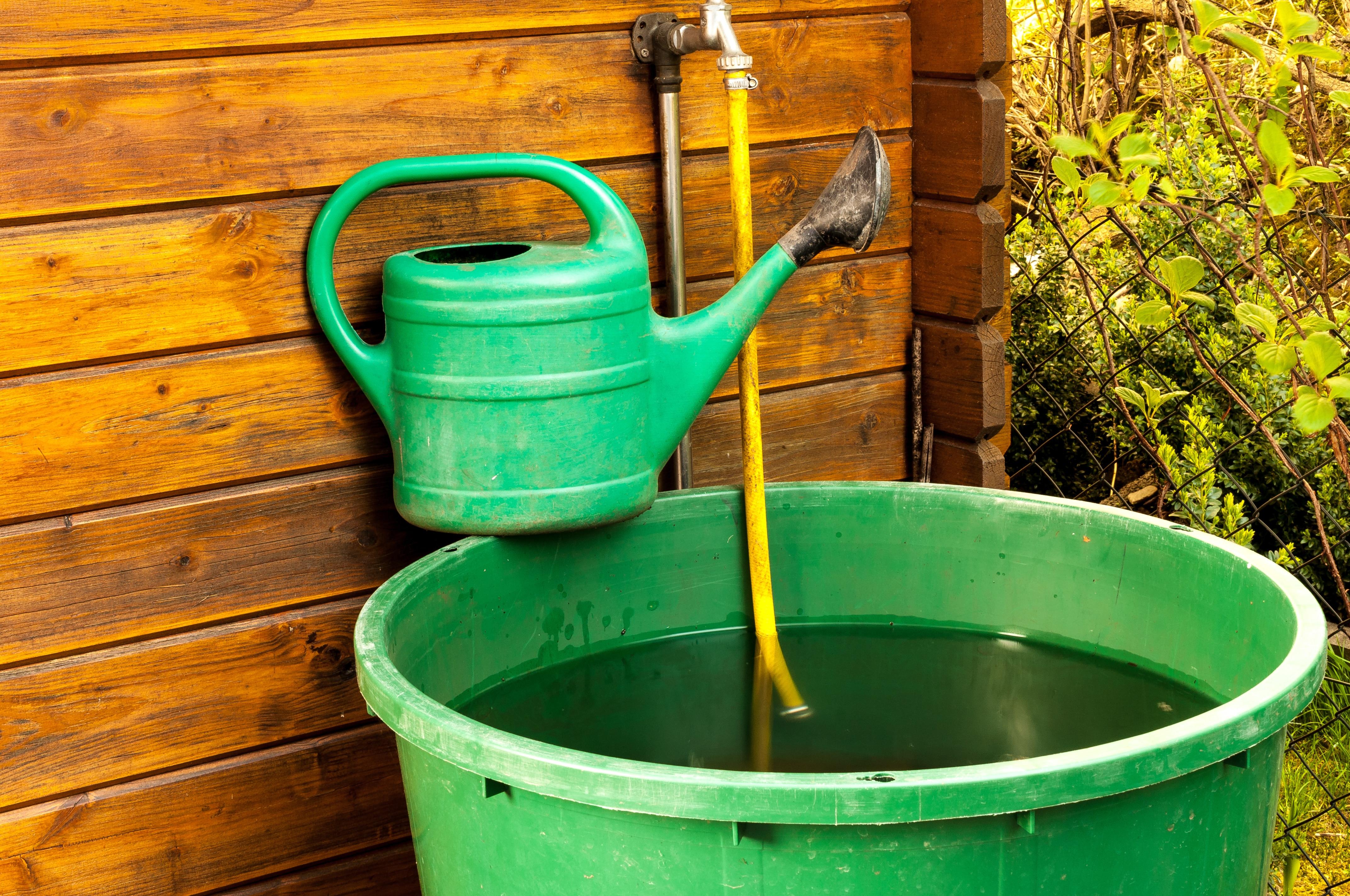 Gießen im Garten