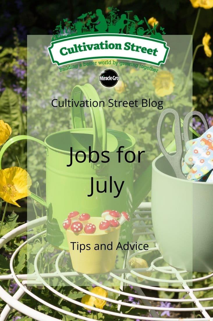 CultivationStreet Blog (3)